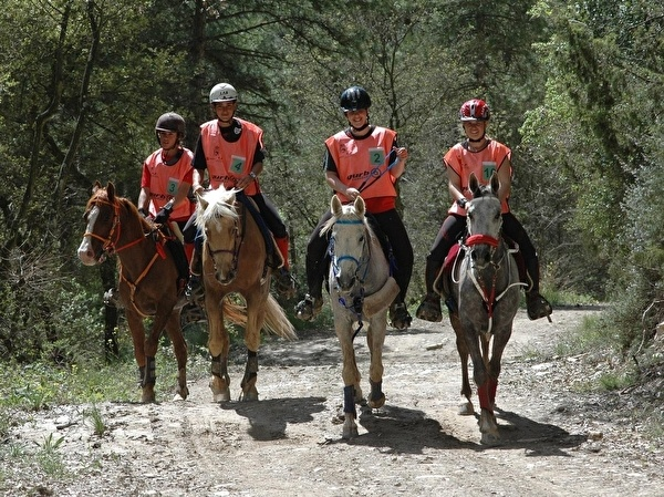 Torre Nova Resort - horseback riding