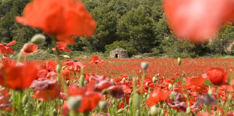 Er op uit in Catalonië